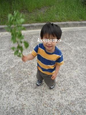 DSCN2572_convert_20110616112411.jpg