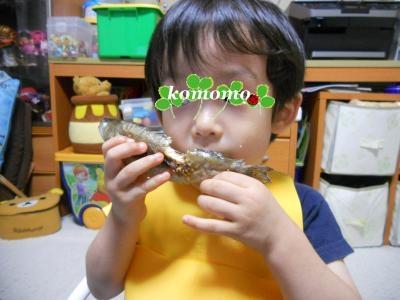 DSCN2680_convert_20110629224411.jpg