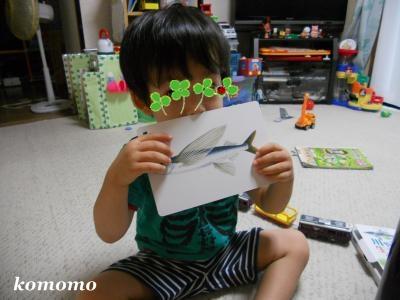 DSCN2756_convert_20110707230939.jpg