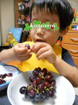 DSCN3662_convert_20110911223041.jpg