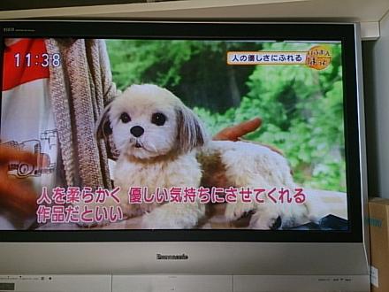 中山みどり先生201412030001