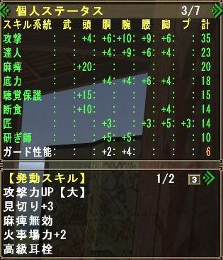 mhf_20101102_121738_765-a.jpg