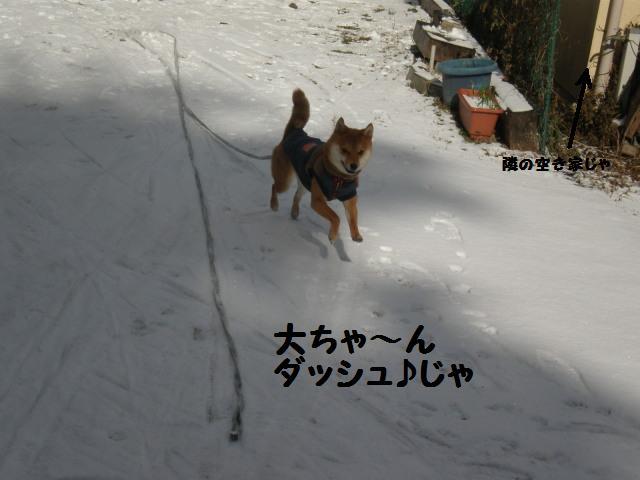 雪~~~~~~