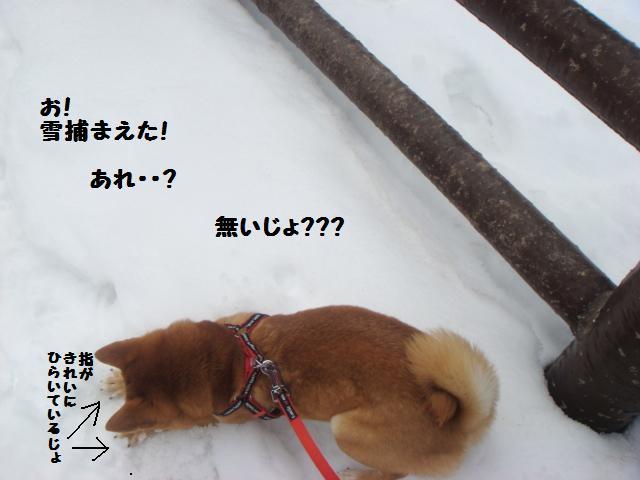 雪あそび3