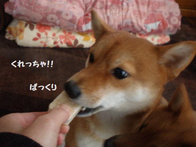 ぽんぽん2