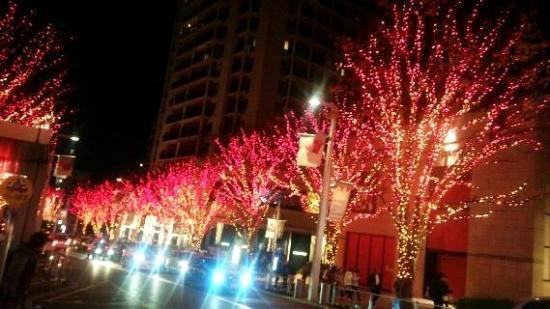 img20131221六本木・赤2.jpg