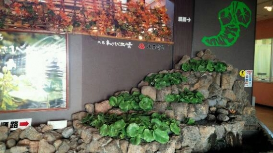 img20141016_wasabi.jpg