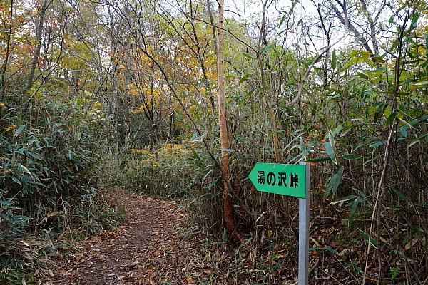 14湯ノ沢峠6