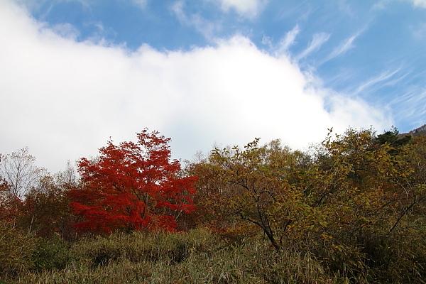 14湯ノ沢峠9