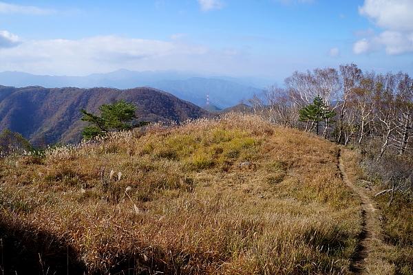 14湯ノ沢峠13