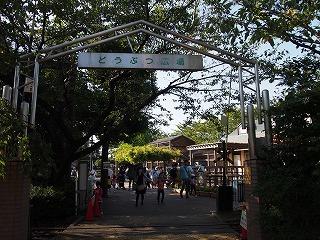 arakawa-yuuen16.jpg