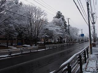 misawa123.jpg