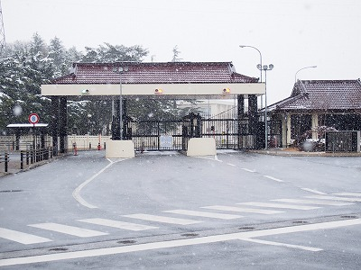 misawa66.jpg