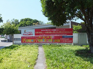 tachikawa-manpaku2.jpg