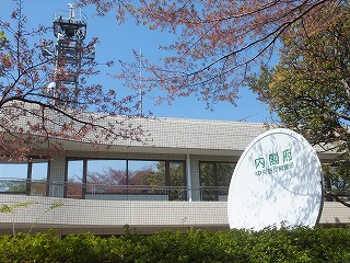 tachikawa-street19-.jpg