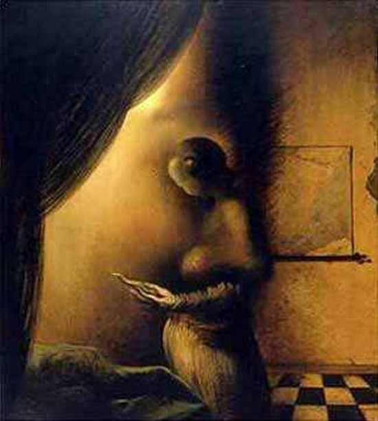 illusions-through-the-paintings-of-salvador-dali-07.jpg