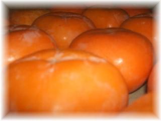 たねなし柿-1