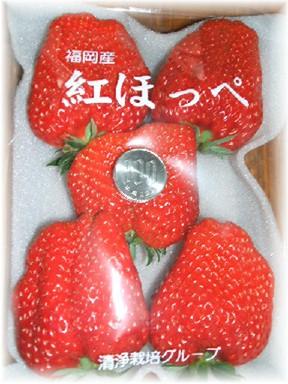 紅ほっぺ-3
