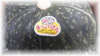 北海南瓜-2