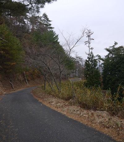 sanngokukosirinndou1312-014b.jpg