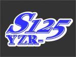 YZF-R125 Racing Custom