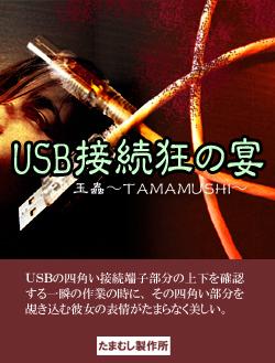 USB接続狂の宴