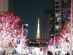 六本木ヒルズ2014.12.