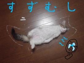 すずむし  ξ:D)| ̄|_...ン?