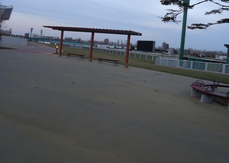 札幌競馬場2