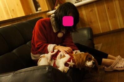 クリスマス 25