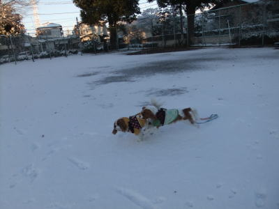 2012 雪 8