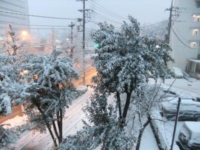 2月雪 1