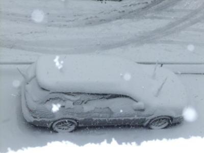 2月雪 10