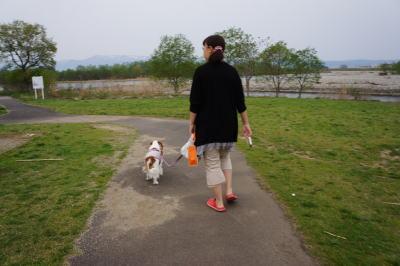 河川敷散歩 1