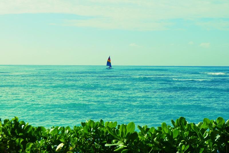 hawaii201410.jpg