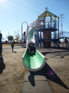 ブログ2 1229公園 (2)