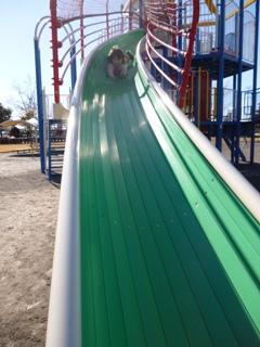 ブログ2 1229公園 (3)