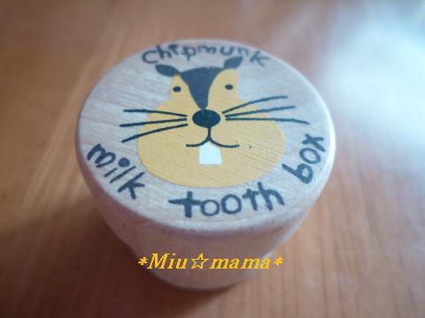 乳歯入れ2