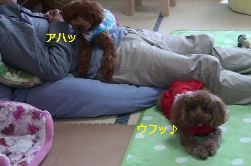 パパ&ナナ姫&ハチ公