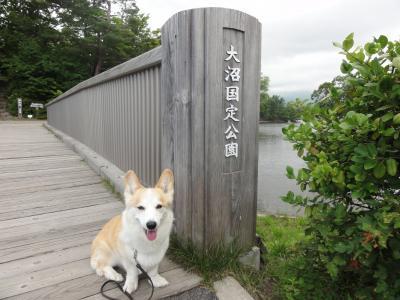 大沼公園でお散歩♪