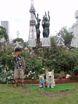素敵な公園♪