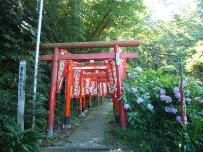 佐助稲荷神社♪