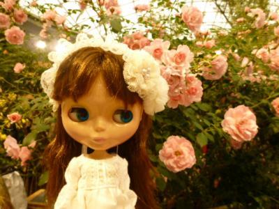 国際バラとガーデニングショウ♪
