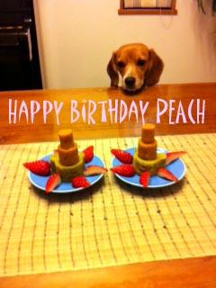 Peach1_20110827150632.jpg