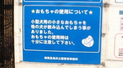 20101130-001.jpg