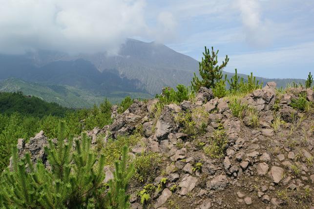 昭和溶岩地帯にて