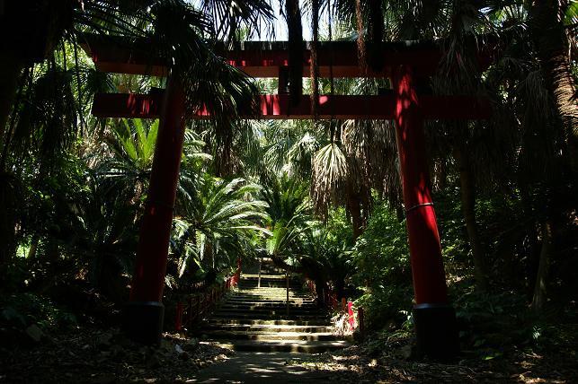 ジャングル神社
