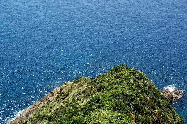 青い海を見下ろす