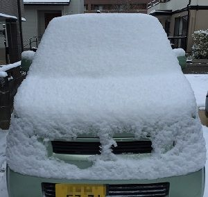 車が真っ白