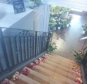 階段に 花びらが